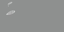 Logo 250p
